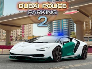 Dubai Police Parking 2